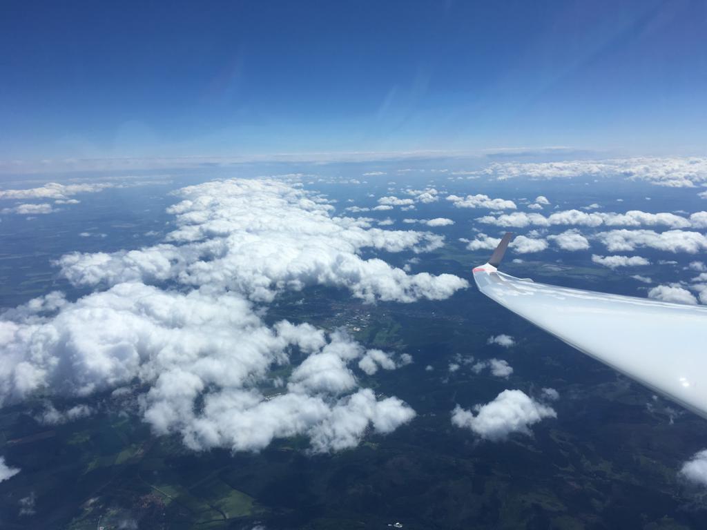 Bild 5 (174-1204LT): Nochmal Blick Richtung Ost, die Sekundärlücke ist zu erkennen, die primäre Lücke ist schon von Cu-Wolkenstraßen gestört.